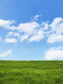 초원과 푸른 하늘과 구름 - 수직 구도