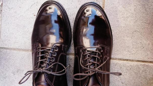 Cordovan leather shoes