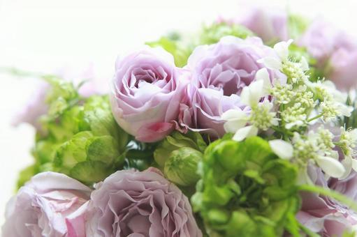 花束玫瑰紫色