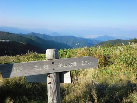 Wang nose · Beautiful tower Road sign