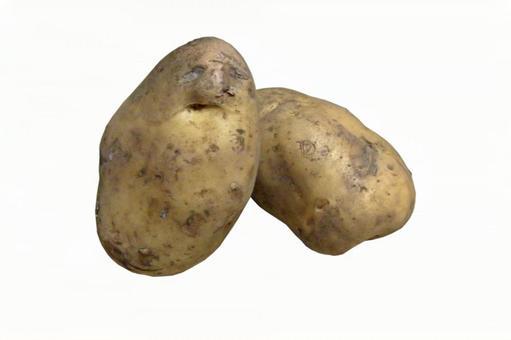 Potatoes # 3