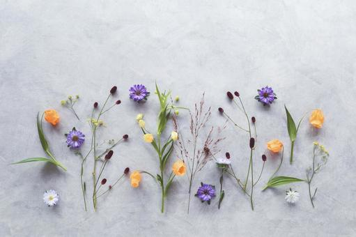 Arrange autumn flowers