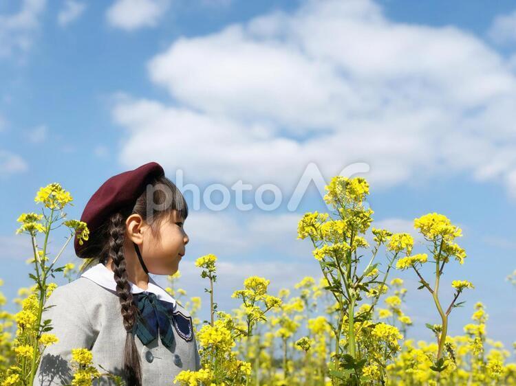 制服を着た幼稚園児と青空_01の写真