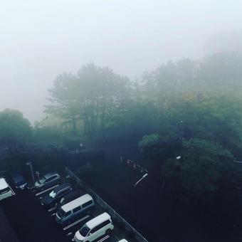 짙은 안개 풍경