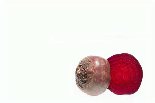 비트 사탕무
