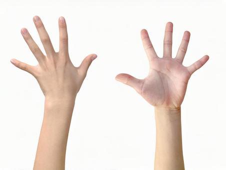 Hand (white background / Cutout PSD) _Par