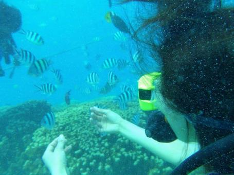 Diving 4