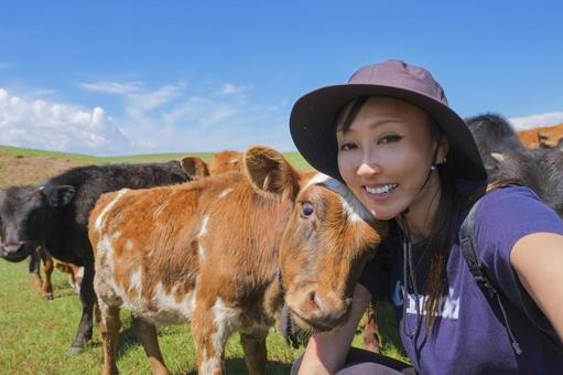 Mongolian cows and selfies