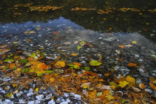 Oono pond and autumn leaves