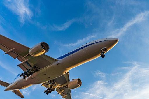 Airport Plane (Itami Airport) 99