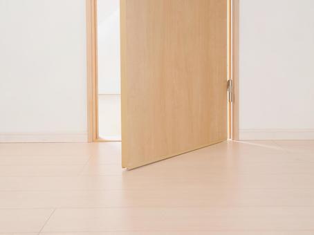 House door 04