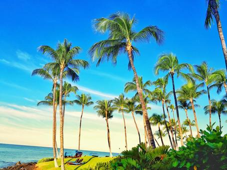 This is a paradise Hawaiian landscape