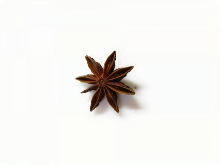 One octagon (star anise)