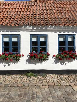 "[Denmark] Windows and flowers in a private house in the old port town ""Ebeltoft"""