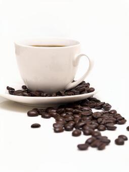 커피 콩 13