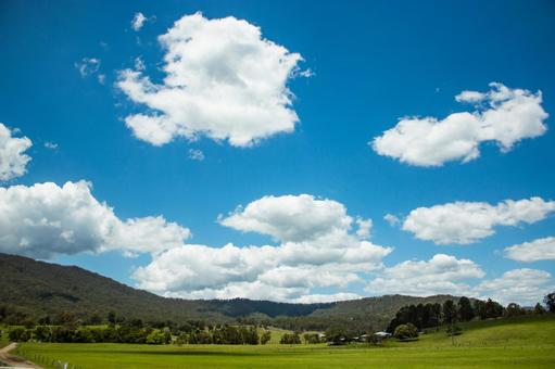 Ranch grazing field large nature horse huge vast wide wide sky cloud earth earth nature country living 3