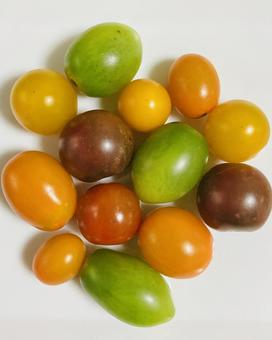 Color tomato (2)