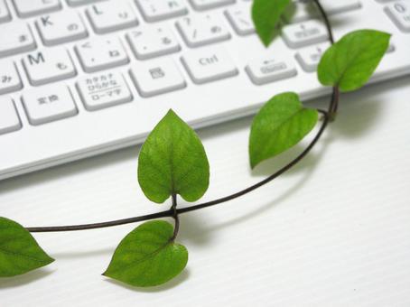 Keyboard and Leaf Vine 1