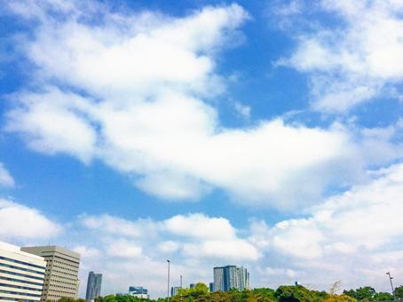 푸른 하늘과 초록과 주택 2