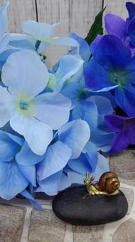 繡球花和蝸牛1