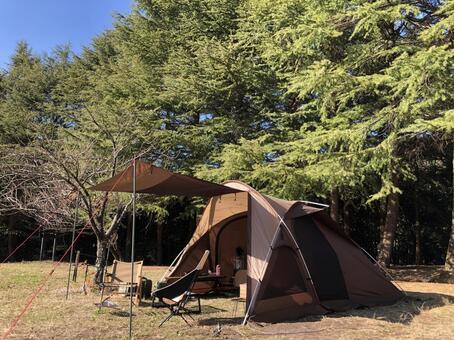 캠핑 숲에서 텐트