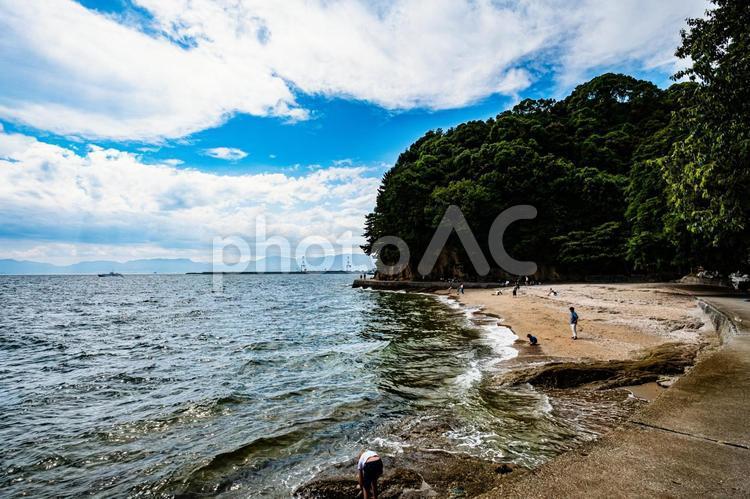夏の海の写真