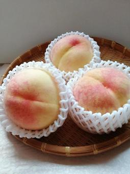Peach White Peach 6
