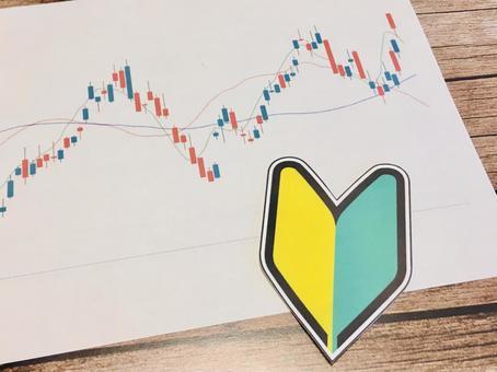 Stock investment beginner