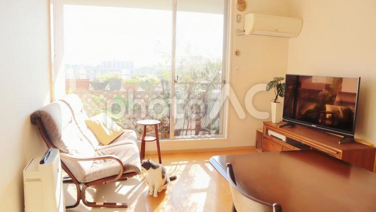 リビング 明るいリビング マンションのリビング 家 部屋 インテリアの写真