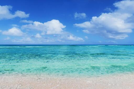 한여름 푸른 바다와 하얀 모래 해변 - 괌 해외 여행