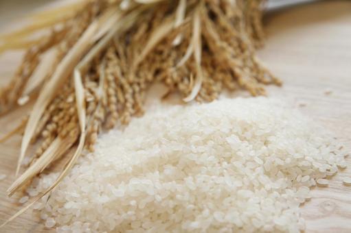Rice and white rice 2