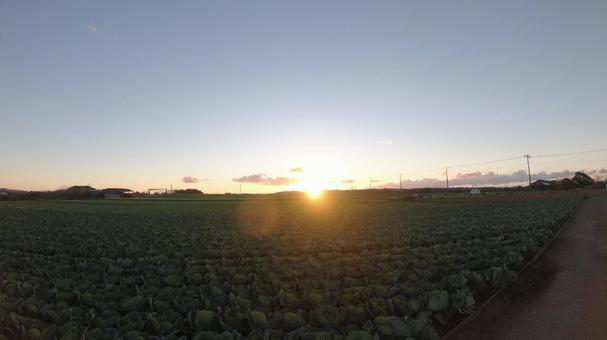 First sunrise seen from the field