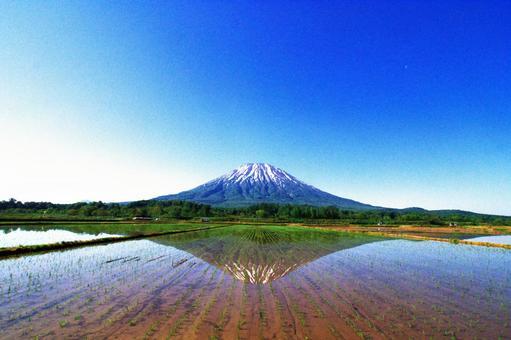 세계에서 인기 니세코의 절경