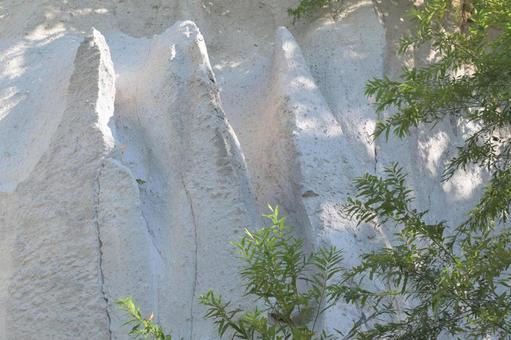 潔白的岩石和樹木