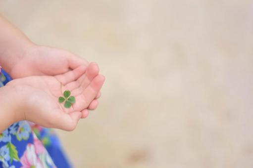 네 잎 클로버와 아이의 손