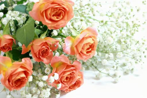 Roses and blurred grasses Bouquets Bouquet background Background wallpaper material