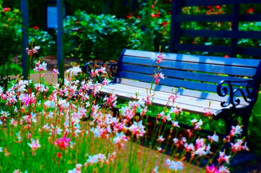 Take a break on a bench surrounded by beautiful flowers