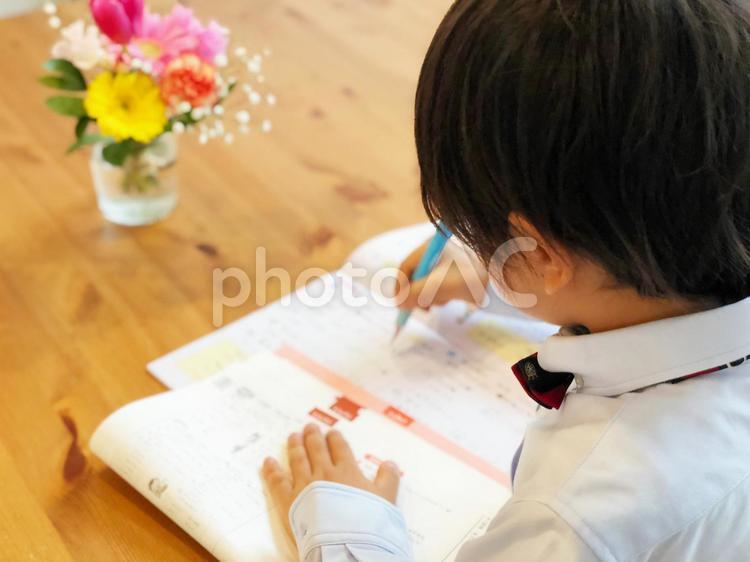 勉強をする少年06の写真