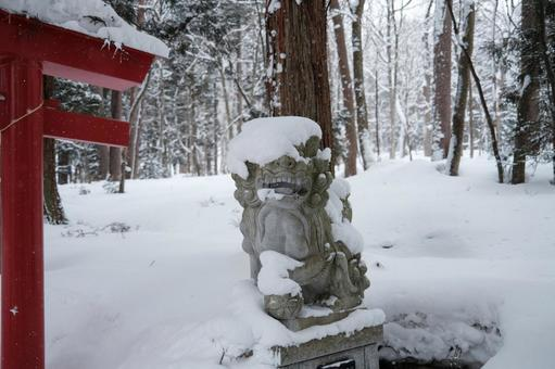 The guardian dog of Sakuramatsu Shrine