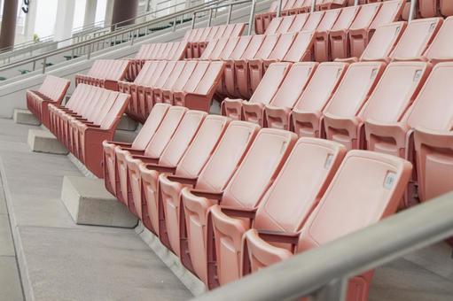 Stadium auditorium