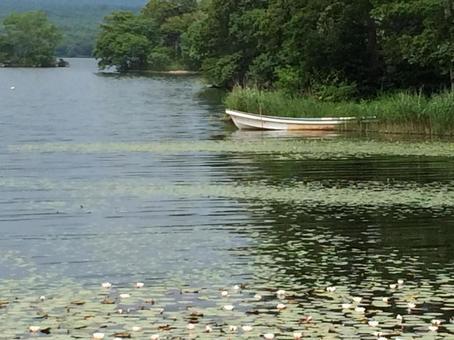 호수의 작은 배