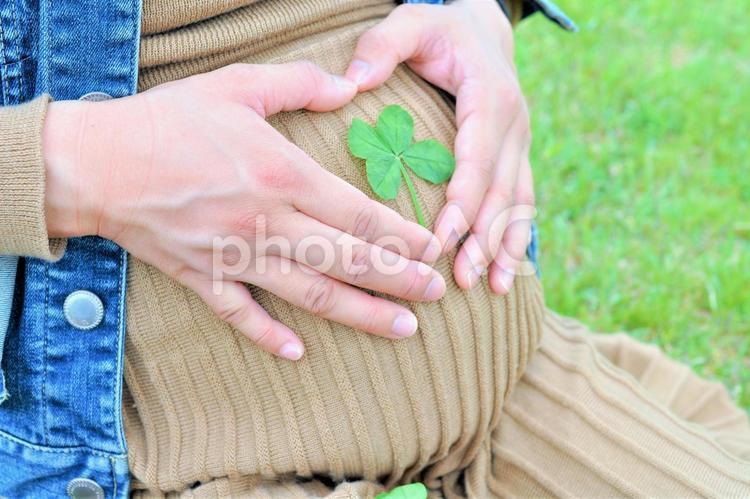 妊婦 安産祈願の写真