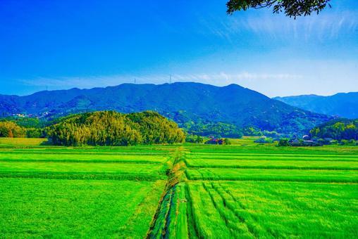 산과 언덕과 논밭