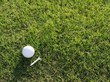 Turf, golf ball and tee peg