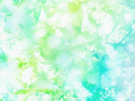 夏天閃耀綠色