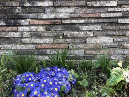 花のあるレンガの壁