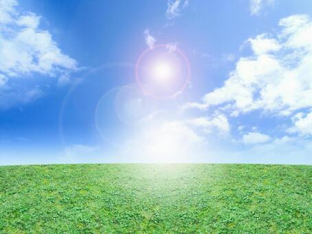 Blue sky and meadow shine