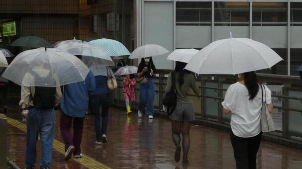 Umbrella landscape on a rainy day