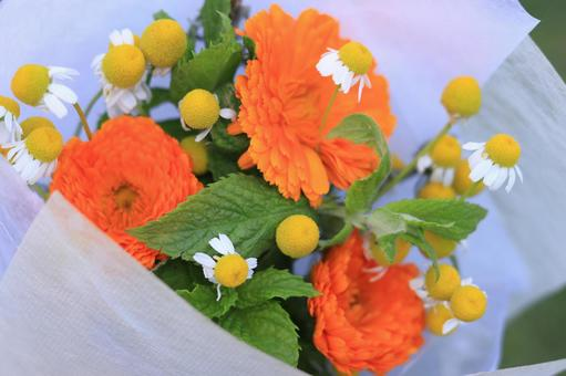 Bouquet 09 (Mary Gold, Chamomile)