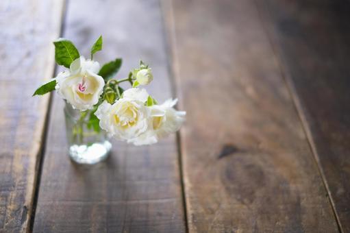 裝飾白玫瑰